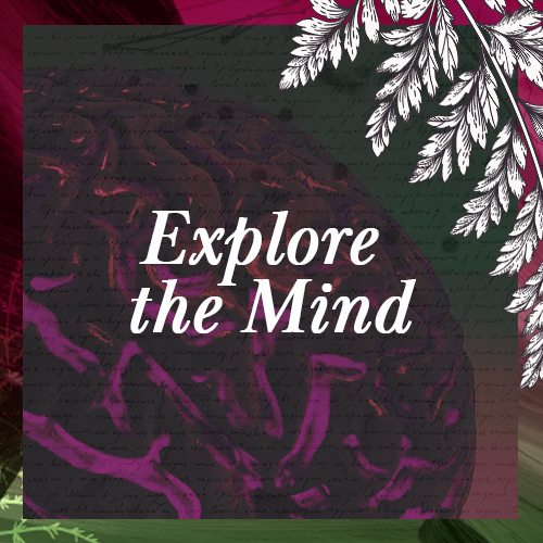 Bootcamp - Icon - Explore the mind