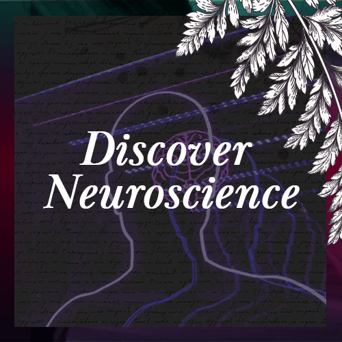 Icon - Discover Neuroscience