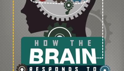 brain neuroscience chronic pain info graphic